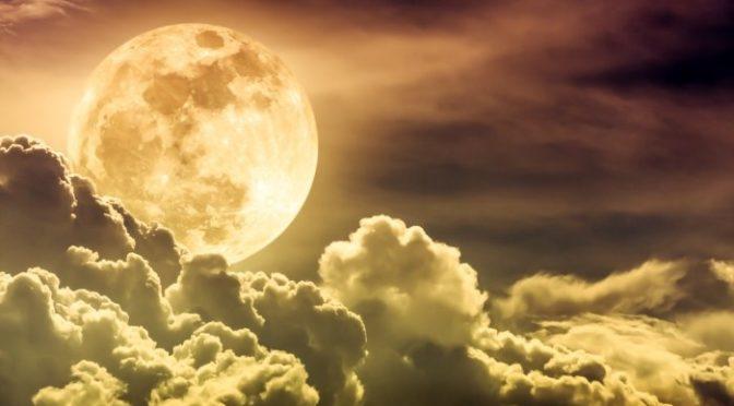 新月は眠くて・・・